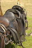 Saddles. Shot from the Viking Moot at the Moesgaard Beach near Aarhus, Denmark Royalty Free Stock Images