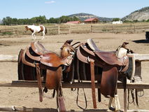 Saddles Stock Image