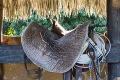 Saddles in the Caribbean Stock Photos