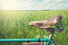 Sadel för läderbruntcykel Sommardag för tur utomhus- closeup arkivbild