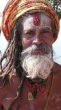 Sadhu。印度 免版税图库摄影