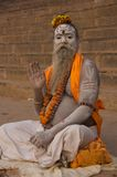 Sadhu在瓦腊纳西,印度 库存图片