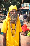 sadhu Royaltyfri Bild