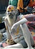 sadhu Royaltyfria Foton