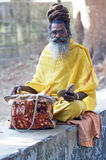 Sadhu Royalty Free Stock Photos