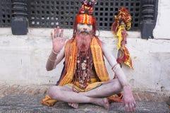 sadhu стоковые изображения