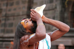 Sadhu  blows conch Royalty Free Stock Images