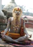 Sadhu die van Shaiva (heilige mens) aalmoes zoekt Royalty-vrije Stock Afbeeldingen