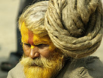 Sadhu with dreadlock hair in Shivaratri festival Royalty Free Stock Photos