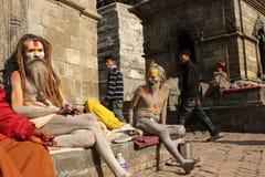 Sadhu (heilige mens) Stock Afbeelding