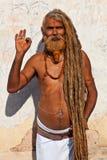 Sadhu (helig man) Arkivbild
