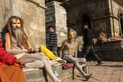 Sadhu (holy man) Stock Image