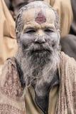 Sadhu - homme saint Photo libre de droits