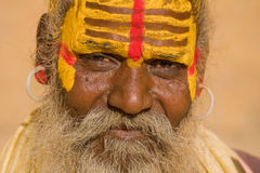 Sadhu indiano (homem santamente) Fotografia de Stock Royalty Free