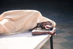 Sadhu indien de sommeil, Jaipur Image libre de droits