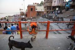 Sadhu lub baba święty mężczyzna na ghats Ganges rzeka Normalnie jest michaelita sadhu, odstępująca, odstępująca materialna przyje fotografia stock