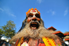 Sadhu man with long beard Royalty Free Stock Images