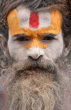 Sadhu in Pashupatinath in Nepal Stockbild