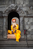 Sadhu at Pashupatinath Temple Royalty Free Stock Photos