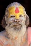 Sadhu portrait Stock Image