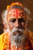 Sadhu in Pushkar India immagine stock libera da diritti