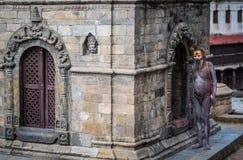 Sadhu snear在加德满都市,尼泊尔 免版税库存照片