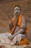 Sadhu in Varanasi, India Stock Afbeeldingen