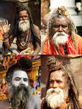 Sadhus in Shivaratri in pashupatinath Temple Royalty Free Stock Photos