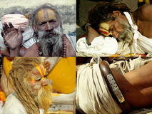 Sadhus in various poses Royalty Free Stock Photography