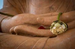 Sadly buddha Royalty Free Stock Image