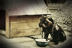 Sadly dog. A small statuette of sadly dog Royalty Free Stock Images