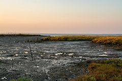 Sado de rivière dans Comporta, l'Alentejo Portugal image stock