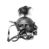 Sadomasochism mask Stock Image
