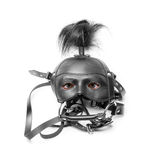 Sadomasochism mask with eyes Stock Images