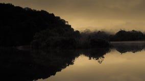 Sadromance di nebbia Fotografia Stock
