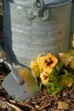 sadzenie Fotografia Royalty Free