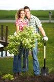sadzenie zdjęcie stock