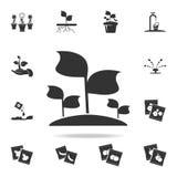 sadzonkowa ikona Szczegółowy set ogrodowi narzędzia i rolnictwo ikony Premii ilości graficzny projekt Jeden inkasowe ikony fo ilustracji