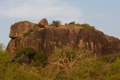 Safai in the Yala Nationalpark. Safari in the Yala Nationalpark in Sri Lanka Stock Photos