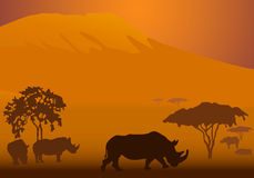 Safari-3. Silhouettes of rhinoceroses in national park of Kenya Royalty Free Stock Image