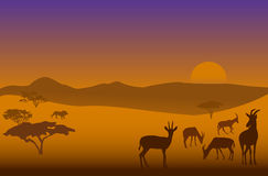 Safari-4. Silhouettes of herd of antelopes and a lion in savanna Royalty Free Stock Photos