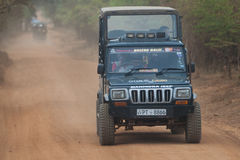 safari Lizenzfreie Stockfotografie