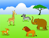 Safari africa Stock Image
