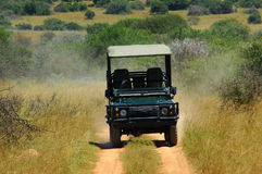On safari in Africa. A typical African vehicle on safari driving on a loamy soil road showing tourists the beauty of an African safari Royalty Free Stock Photo