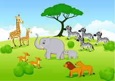 Safari Africa Cartoon Royalty Free Stock Image