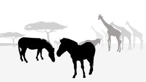 Safari africa silhouette-vector Royalty Free Stock Photo
