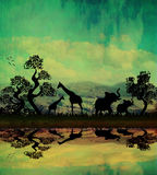 Safari in Africa silhouette of wild animals. Reflection in water Stock Image