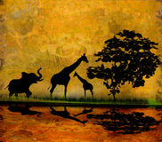 Safari in Africa silhouette of wild animals. Reflection in water Royalty Free Stock Photography