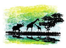 Safari in Africa silhouette of wild animals reflection in water. Illustration Stock Images