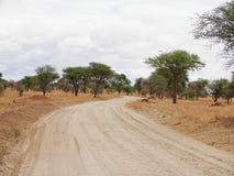 Safari in Africa Tarangiri-Ngorongoro. Jeep, road, road to paradise, travel, jeep ride, jeep safari, guide, trees in Africa, safari in Tanzania, savanna in royalty free stock photo